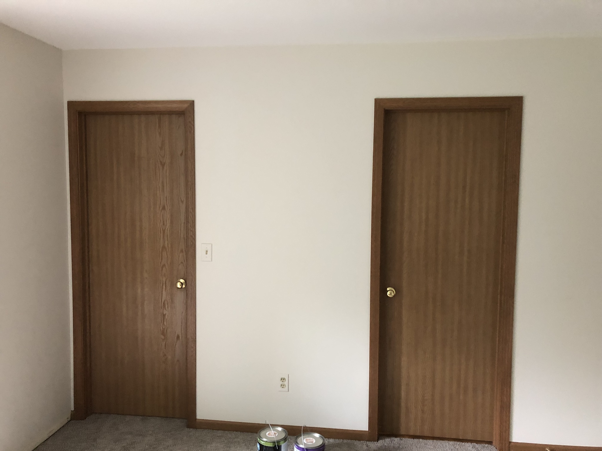 Before - hollow core brown doors & trim